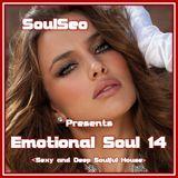 Emotional Soul 14