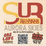 New Chat #5 - Aurora Skies Riddim Mix - DJ Pete Bodega