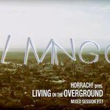 LIVING ON THE OVERGROUND PT.1