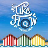 Minimix Electro House - Tike Flow Festival 2014