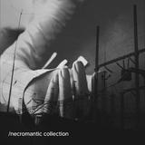 Necromantic Collection