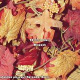DJ Constantine Presents: November Hours 13-11-29 | Whirl Raw Hardstyle Mix #novemberhours