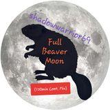 shadowwarrior69 - Full Beaver Moon (120min Cont Mix)