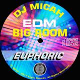 DJ Micah & project Stealth present... BIG ROOM Euphoric