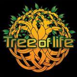 Mysticism - Night shift Promo Set - Tree Of Life Festival - 2014