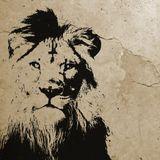 Strefa Dread - audycja 369 (Lion Vibrations),18-12-2014