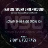 Ziggy Flow-Tek & Peetrass - Nature Sound Underground Showcase #029 on activitysound.com Radio