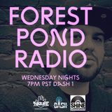 Forest Pond Radio Ep #40 - Guest Set Rev Shines