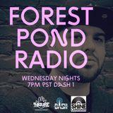 Forest Pond Radio Ep #40 - Guest Set Rev Shines