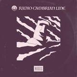 Radio Cambrian Line: 02-11-2017