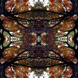 dj ThD  - forest /psytrance set 9/6/19