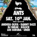 Andrea Oliva & Uner - Live @ Ants Party, The BPM Festival, Blue Parrot, México (10.01.2015)