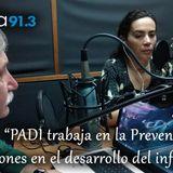 Enredando 2017-12-05 - Proyecto PADI