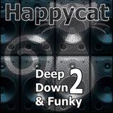 Deep Down & Funky 2