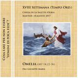 Omelia (Mt 14,22-36) - Martedì della XVIII sett. T.O. - Anno A (4m53s)