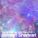 Buzzard Beats Mix Series Volume Five: Bowly / Sharivari