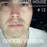 ABSOLUT HOUSE by CREICIU VERDUN # 12   SOUTH PATAGONIA HOUSE
