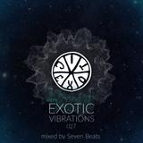 Exotic Vibrations 027 (February 2016)