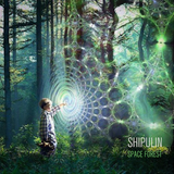 Shipulin - Space Forest