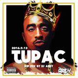 Tupac R.I.P Mixtape Mixed by DJANDY