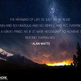 The Meaning of Life 0.2