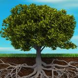 Repentance (Deep Roots) - Riaan Niemand