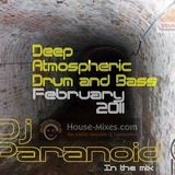 Dj Paranoid<>Deep Atmospheric dnb Mix<>Feb 2011