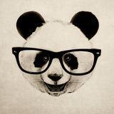 Never Say No To Panda # 15