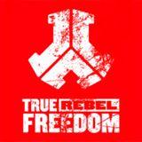 Tosh1R - Digital Life #6 Defqon.1 Warmup Mix