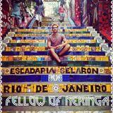 Fellow of Neringa: Lukas Keraitis in Brazil
