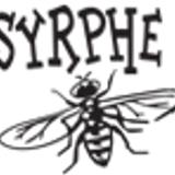 Syrphe l'explorateur des musiques expérimentales du monde