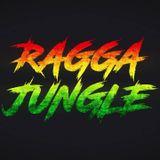 JUNGLE RAGGA new set 2018