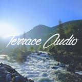 Terrace Audio Mixtape Vol. 15 (techno, acid, house)