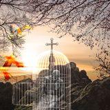 2018-09-16 Je weg kennen, weten als christen door Nick Vandeputte (externe spreker)