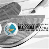 Blossom Mix Vol.3 - Tribute To Nujabes a.k.a Seba Jun -