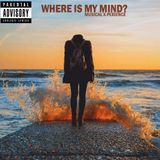 Musical X-Perience - Where is my Mind
