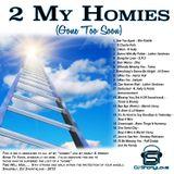 2 My Homies (Gone To Soon)