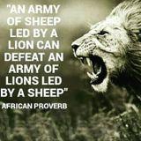 Never wake a sleeping lion Mighty Construction Sun 28th Oct 2018 3 till 6pm WWW.GalaxyAFIWE.COM