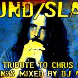 Special Tribute To Chris Cornell (100 Songs Mixed by Dj Aladyn) Soundgarden/Audioslave