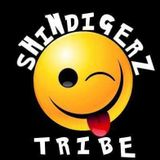 SHINDIGERZ TRIBE psy trancer by simon hicks