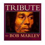 Bob Marley Tribute (DJ ShaDooZy)
