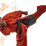 Shaolin Iron Claw