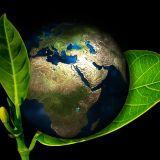 Ökológiai megtérésünk - Laudato si