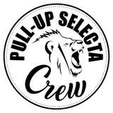 Pull-Up Selecta 2017 Mixtape