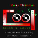 Intune & Becool Radio Show 2011 Episode 12 with Bass DJ
