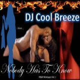 Nobody Has to Know: R&B Mixtape Vol. 1