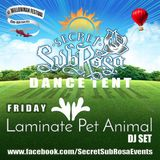 Secret Sub Rosa at Willowman Festival 2017 - Laminate Pet Animal DJ set