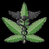Cannabis - Episode 1