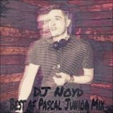 The Best of Pascal Junior Mix by Dj Noyd