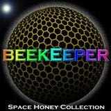 Dj BeeKeeper - Space Honey Collection (Psartrek afterparty 19.04.2017)